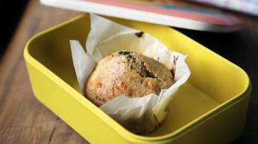 broodtrommel-brood-lunch-school-alternatieven-jmouders.nl