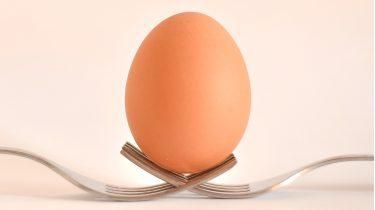 Een ei op twee vorken